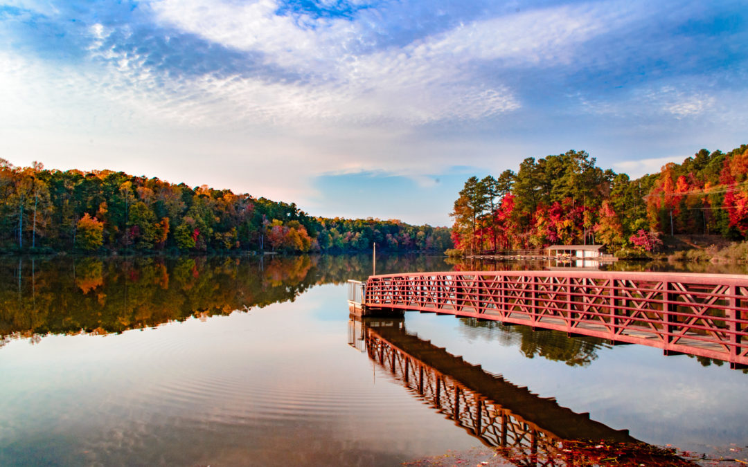 Lake Umstead Fall